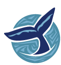 Whale Watching in Brier Island gift certificates
