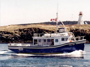 Mega Nova Whale Watching boat tours in Brier Island, Digby Neck, Nova Scotia